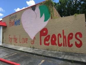 Georgia Peach World – doctorzygo